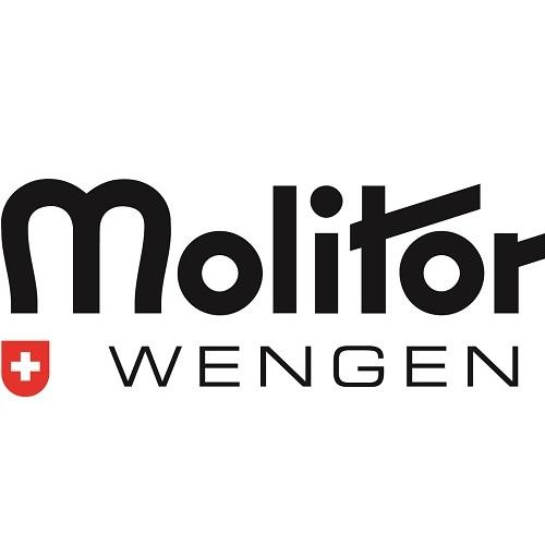 Molitor Sport Wengen